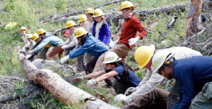 Southwest Four Corners Youth corps members moving large logs