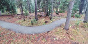 Oh Be Joyful Project - clean trail near a campsite