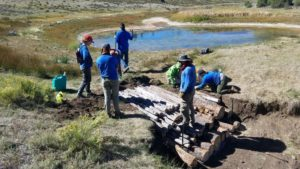 Sage Grouse Project - people standing beside logs for trail maintenance